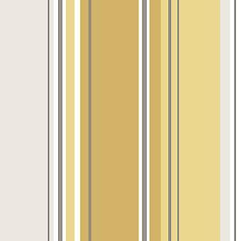 Energy Stripe Wallpaper Metallic Shiny Stripey Striped Bold Luxury Coloroll