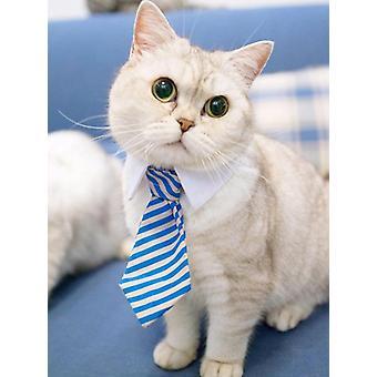 Cravate rayée d'animal familier