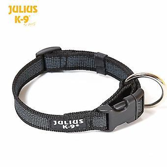 Collier de chien noir Julius-K9 - 20mm