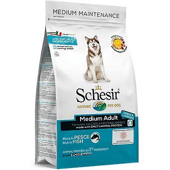 Schesir Schesir  Medium Maintenance with lamb (Dogs , Dog Food , Dry Food)