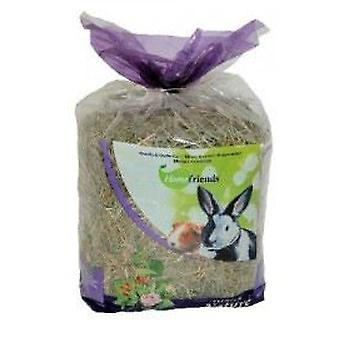 Home Friends Mint and Rose Hips Hay (Small pets , Hay , Bedding)