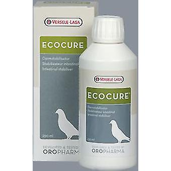 Versele Laga Ecocure (Oiseaux , Compléments et suppléments)