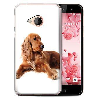 STUFF4 Gel TPU Case/Cover for HTC U Play/Alpine/Cocker Spaniel/Dog Breeds
