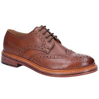 Cotswold Quenington läder mens spets upp skor