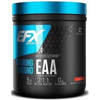 All American EFX Übungsplatz EAA 213 g