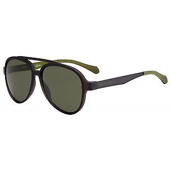 משקפי שמש גברים 1074/SYZ4/QT בגדי ריקוד גברים חום/ירוק