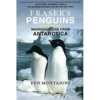 Fraser's Penguins: varningstecken från Antarktis