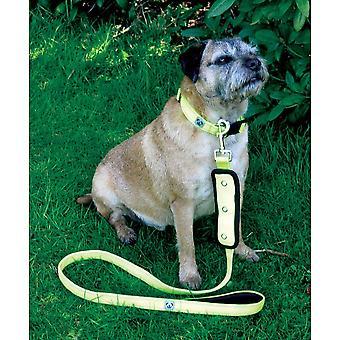Woofmasta Flash Dog Lead