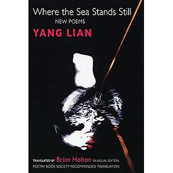 Where the Sea Stands Still : New Poems