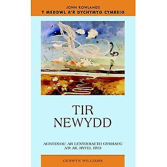 Tir Newydd: Llenyddiaeth Gymraeg A'r Ail Ryfel Byd (Y Meddwl Ar Dychymyg Cymreig)