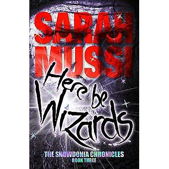 Here be Wizards - The Snowdonia Chronicles - Book Three by Sarah Mussi