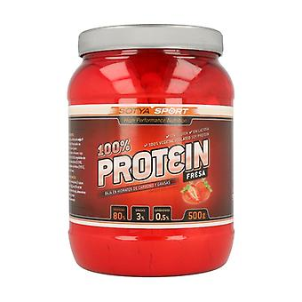 90% Protein 500 g of powder (Strawberry)
