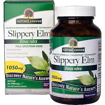 Nature's Answer, Slippery Elm, Ulmus Rubra, 1050 mg, 90 Vegetarian Capsules