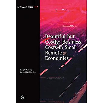 Beautiful but Costly: Business Costs in Small Remote Economies, Economic Paper 67