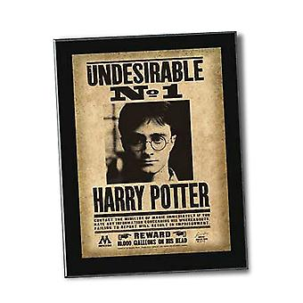 Harry Potter Undesirable Wall Plaque from Harry Potter