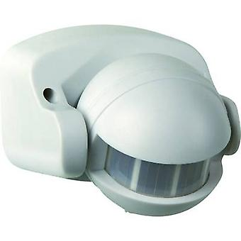 GAO 657 Surface-mount, Wall PIR motion detector 180 ° White IP44