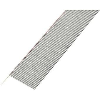 Conrad Bauteile SH1998C203 Flachband-Kabel Grau