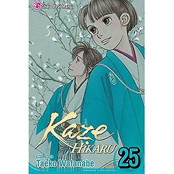 Kaze Hikaru, Vol. 25 (Kaze� Hikaru)