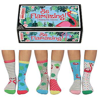 United Oddsocks Be Flamazing Sock Gift Set For Girl's