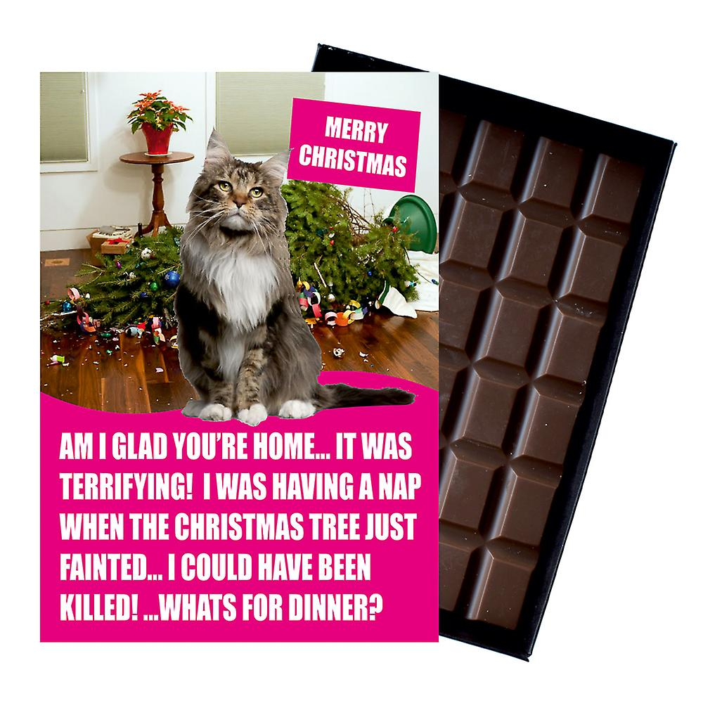 Maine Coon Cat Christmas Gifts Funny Xmas Presents for Cat Lovers Boxed Chocolate Greeting Card