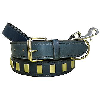 Bradley crompton genuine leather matching pair dog collar and lead set bcdc10skyblue
