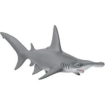 Hammerhead Shark USA import