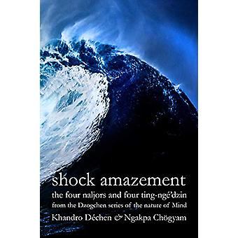 Shock Amazement - The four naljors and four ting-nge'dzin from the Dzo