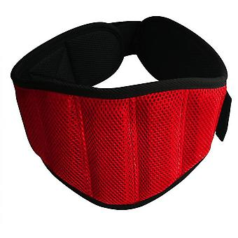 Waist Trimmer Belt, Sweat Wrap,  Low Back And Lumbar Support(Red)