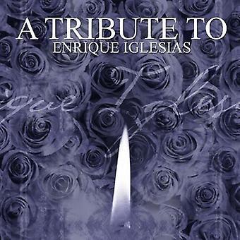 Tribute to Enrique Iglesias - Tribute to Enrique Iglesias [CD] USA import