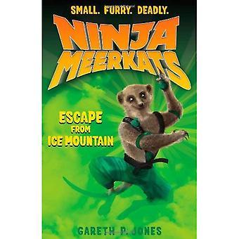 Ninja Erdmännchen (#3): Flucht aus Ice Mountain
