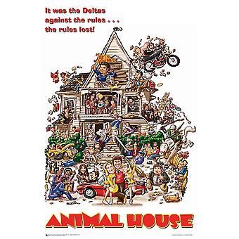 Poster - Studio B - Animal House - One Sheet 23