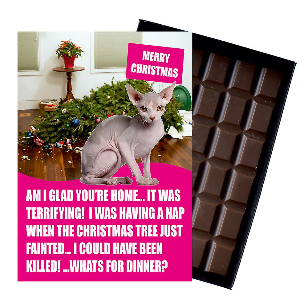 Sphynx Cat Christmas Gift Funny Xmas Presents for Cat Lovers Boxed Chocolate Greeting Card