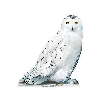 Hedwig Official Harry Potter Cardboard Cutout / Standee / Standup