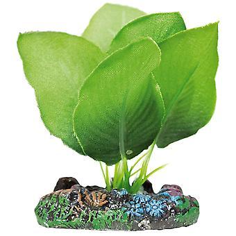Aquatic Plants Anubias Seidenpflanze (Fische , Aquariumsdeko , Künstliche Pflanzen)