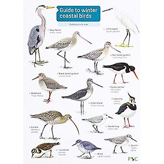 Guide to winter coastal birds: 2018 (FSC Fold-out chart)