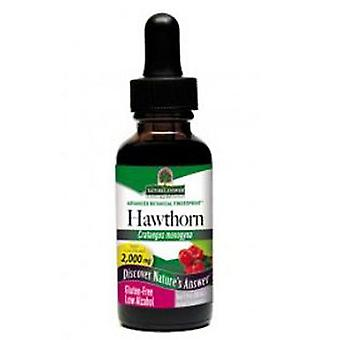Nature's Answer Hawthorn, Berries Extract 1 FL Oz