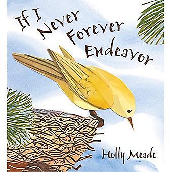 Om jag aldrig Forever Endeavor