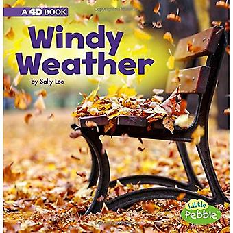 Windy Weather: A 4D Book (All Kinds of Weather)