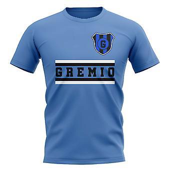Kjernen Gremio Football Club T-Shirt (grå)