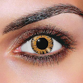 Big Eye Sweet Honey Contact Lenses (Pair)