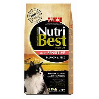 Picart NutriBest Cat Fish and Rice (Cats , Cat Food , Dry Food)