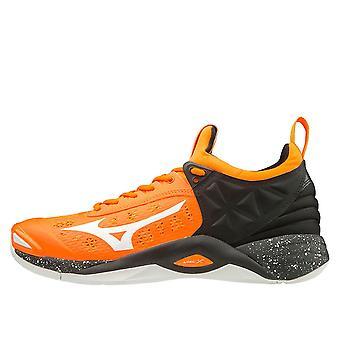 Mizuno Wave Momentum V1GA191254 volleyball all year men shoes