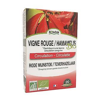 Red Vine / Organic Hamamélis 20 bulbs