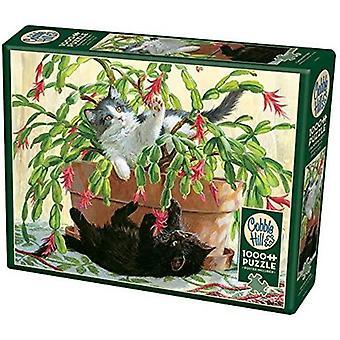 Cobble hill puzzle - cactus kitties - 1000 pc