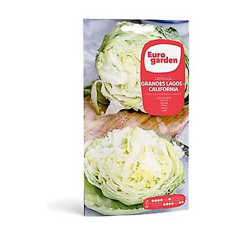 California Great Lakes Lettuce Seeds 5 g