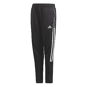 Adidas Tiro 21 Junior Training Pant