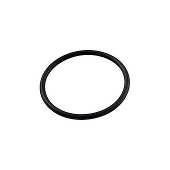 Pentair R172319 nedre O-Ring för Pool eller Spa i-Line automatisk dokumentmatare