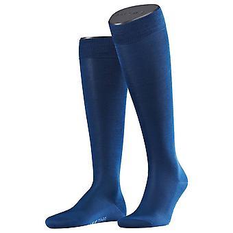 Falke Tiago sokken knie hoge - Royal Blue