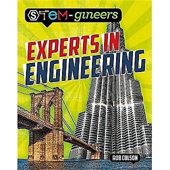 Experten in den Ingenieurwissenschaften (Stem-Ingenieure)