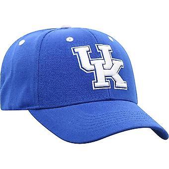 Kentucky Wildcats NCAA TOW Triple Threat Adjustable Hat